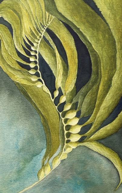 Kelp Mediations, Kimberly Mehler