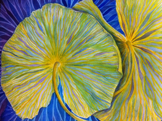 Pond Lilies, Kimberly Mehler