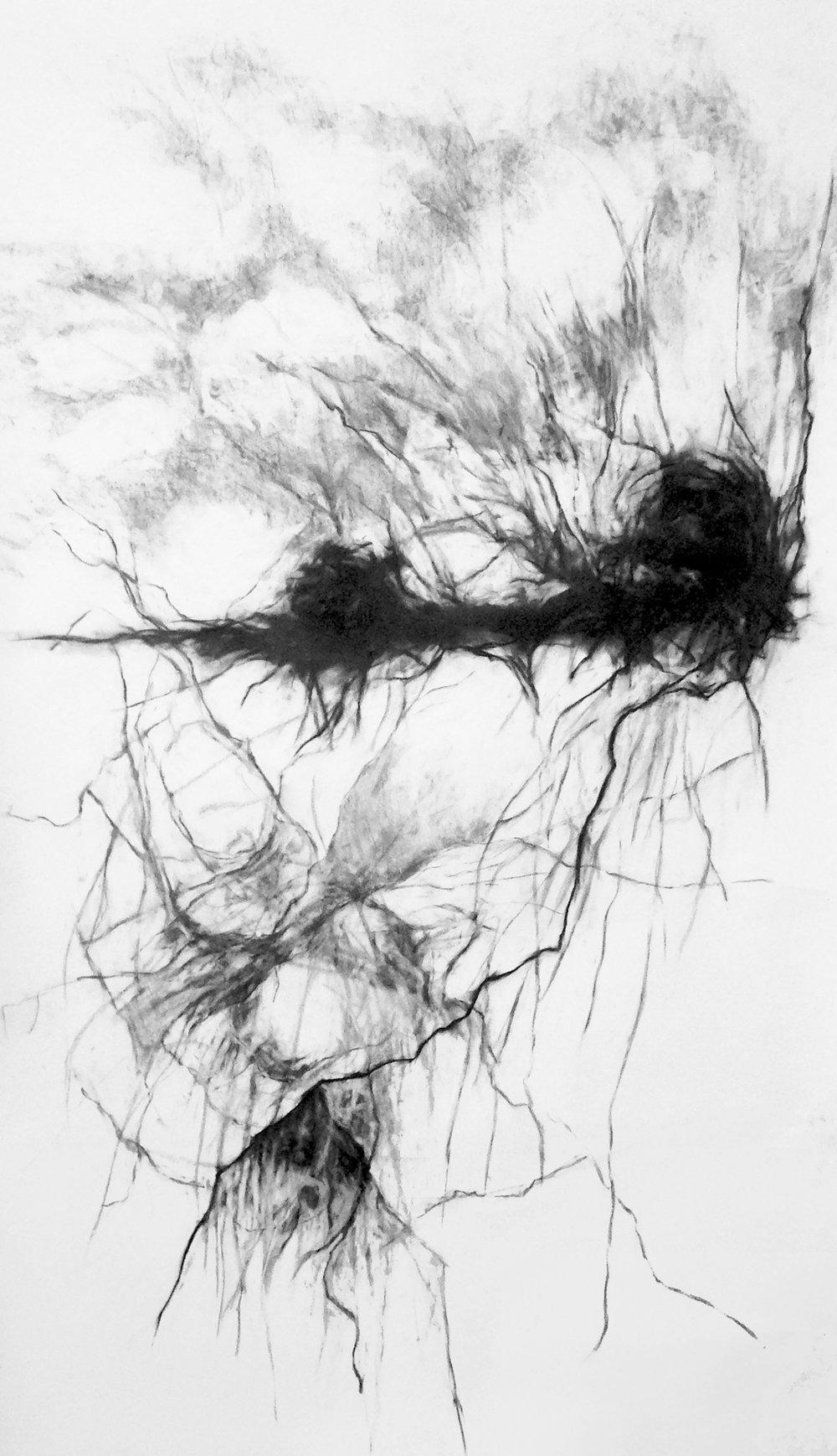 Rebecca Schultz, Horizon drawing
