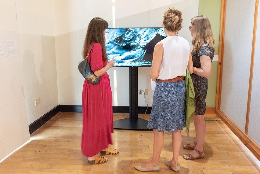 Video Installation at Marginalized