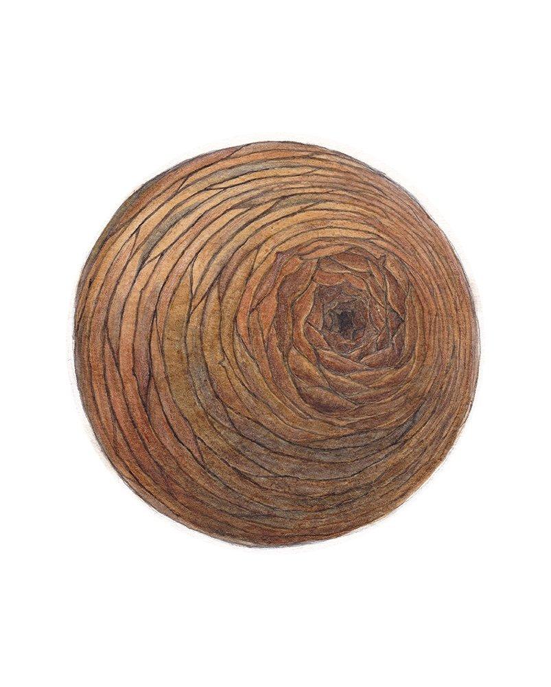 Barrel, Kimberly Mehler